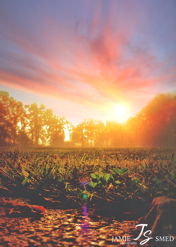 iphoneedit jamiesmed app snapseed 2014 clintoncounty ohio mextures rural sky september sunrise landscape sun summer