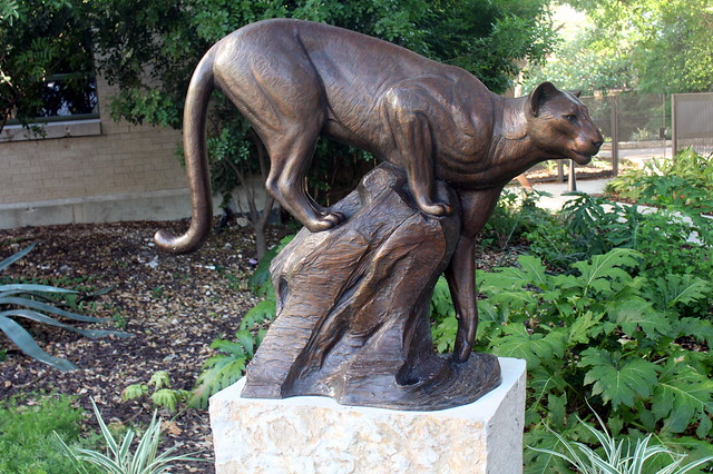 San Antonio - Downtown: Briscoe Western Museum - By the River