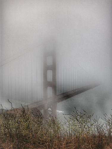 goldengatebridge fog karlthefog bridge mist