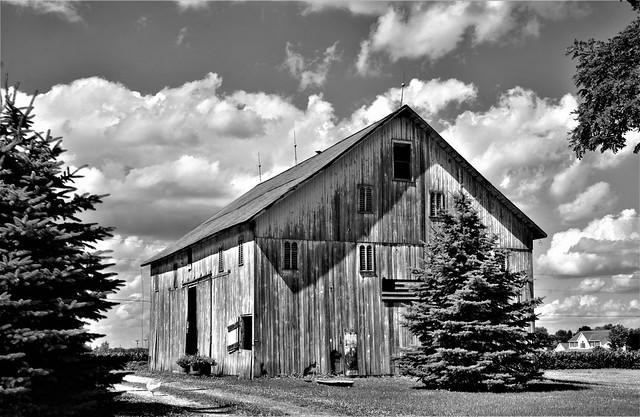 Barns in B&W