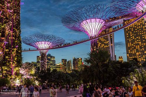 Singapore - Bay & Gardens   by Robin Hickmott