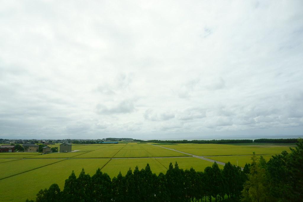 杉沢の田園風景