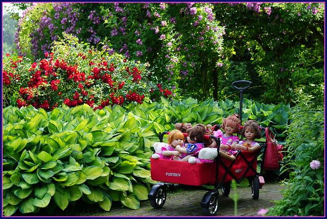Die Kindergartenkinder besuchen den Park von Schloss Arcen ...