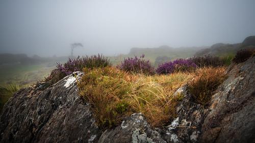 The mystique of Ogwen valley. | by Einir Wyn Leigh