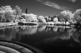 Winchester mill pond IR