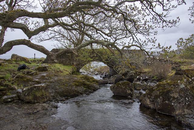 Bridge By Eas Fors Waterfall