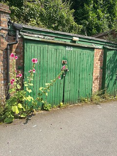 Wildflowers and lock ups just of the main road