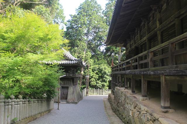 ichijoji008