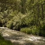 Melendiz River