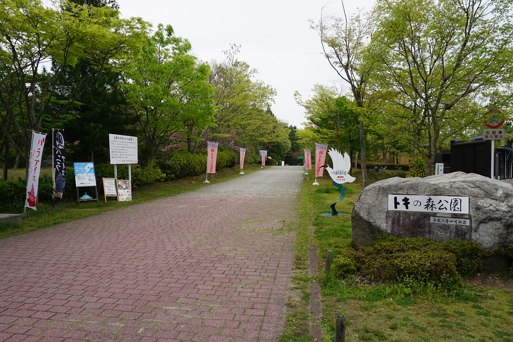 トキの森公園