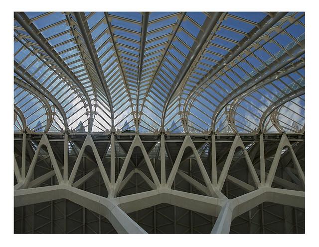 Lush concrete (Museo de las Ciencias Príncipe Felipe)