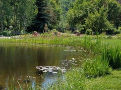Yampa Valley Botanic Gardens