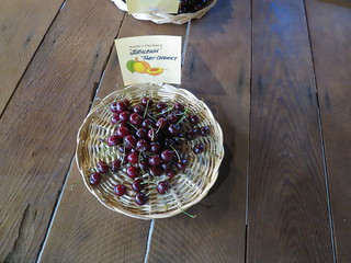 'Jubileum' Tart Cherry