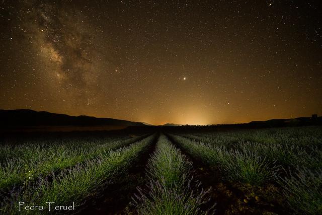 Noche en Campos de San Juan