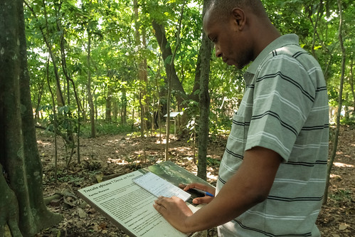 Formation, Recherche, et Environnement dans la Tshopo (FORETS), Democratic Republic of Congo | by CIFOR