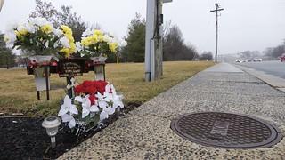 Roadside Memorial for Carlos Romero Espinoza (1 of 4)