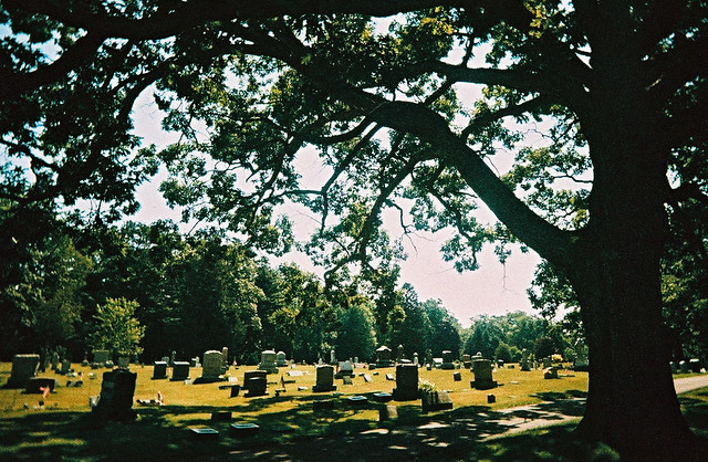 Peace in the cemetery