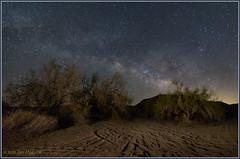 Desert Solitude 1006