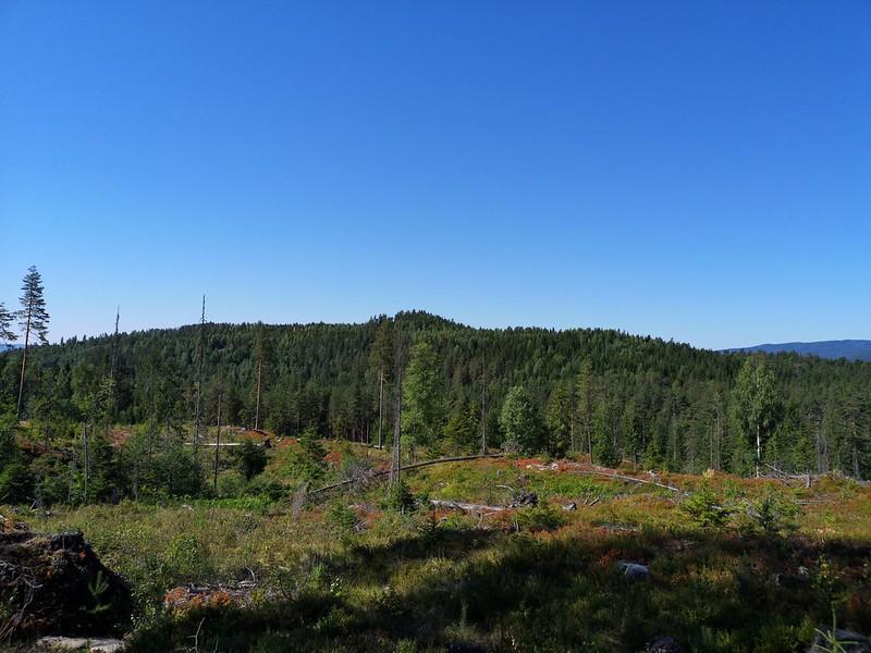 03-Utsikt mot Hovet