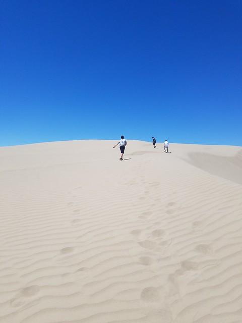 Winnemucca Sand Dunes, Nevada