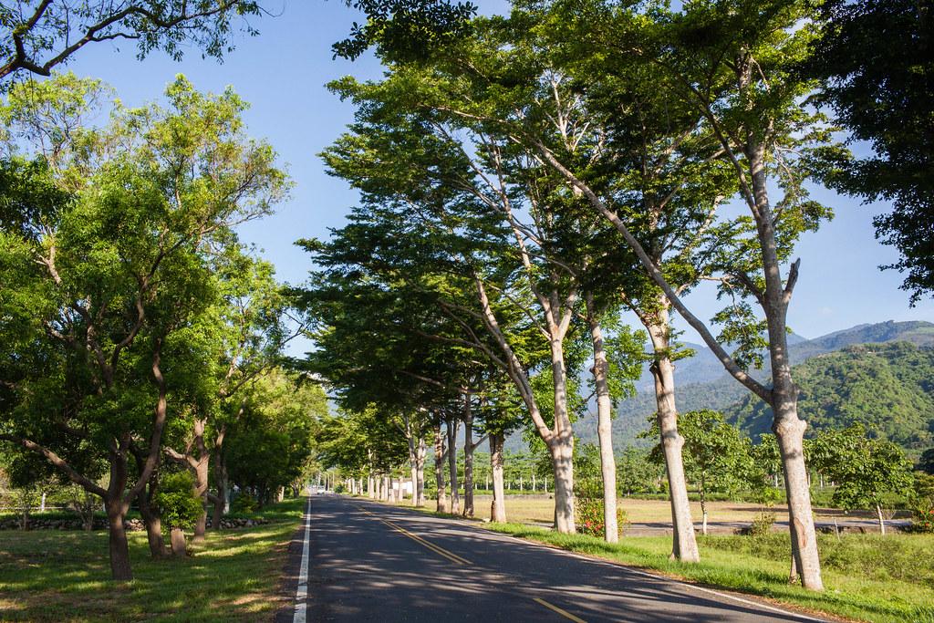 2018.7.1_台灣:台東.八天七夜之旅.第二天