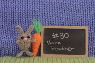 Rabbit30HareHeather