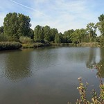 Kleines Gewässer neben dem Ümminger See