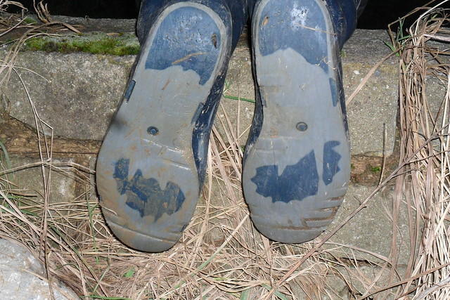 190 -- Stincky and wornout Dunlop Wellies -- Bottes Dunlop puantes et usées --  Gummistiefel  -- Dunlop - Hevea laarzen