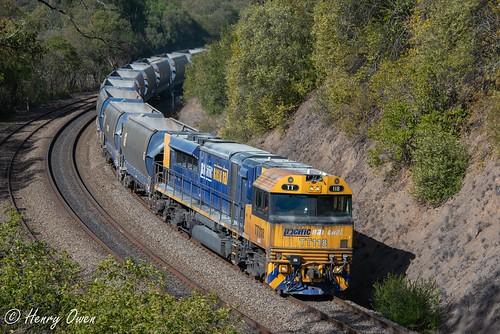 tt118 tt124 ttclass emd diesel gt45cace pacificnational pn downeredi stonetrain freighttrain picton 1225
