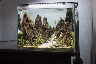 mountain nigel vivarium room shot   by nigel_kh