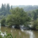 Das Sommerhochwasser der Ruhr Ende August 2007 in der Heisinger Ruhraue