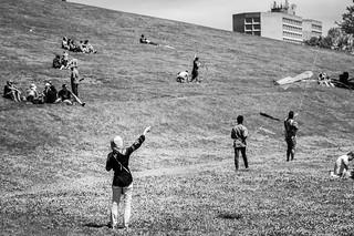 halifax kite festival