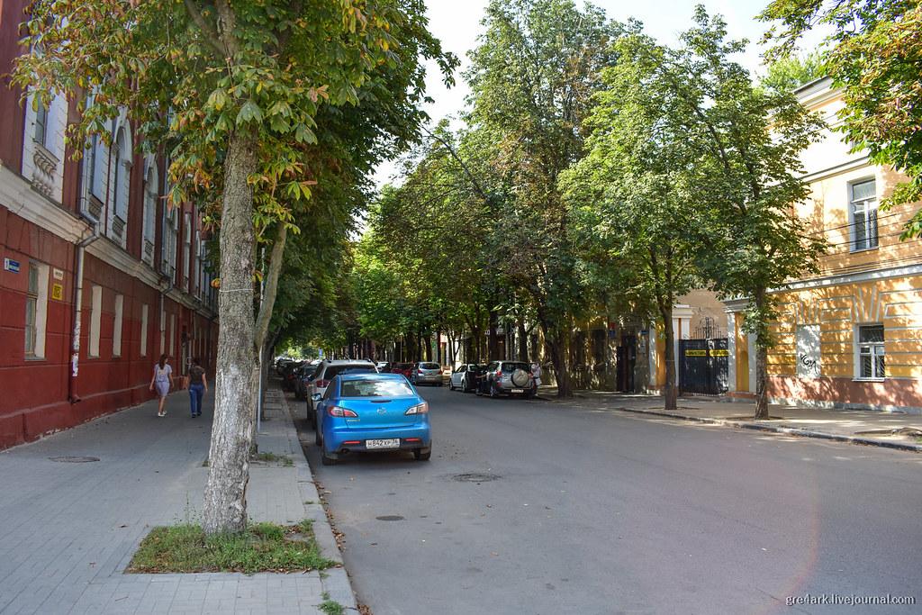 Зелёная улица в Воронеже