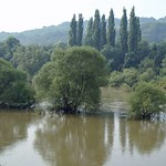 Heisinger Ruhraue mit Hochwasser