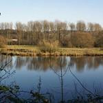 Teich in der Heisinger Ruhraue im Herbst;