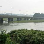 Die Konrad-Adenauer-Brücke bei Hochwasser