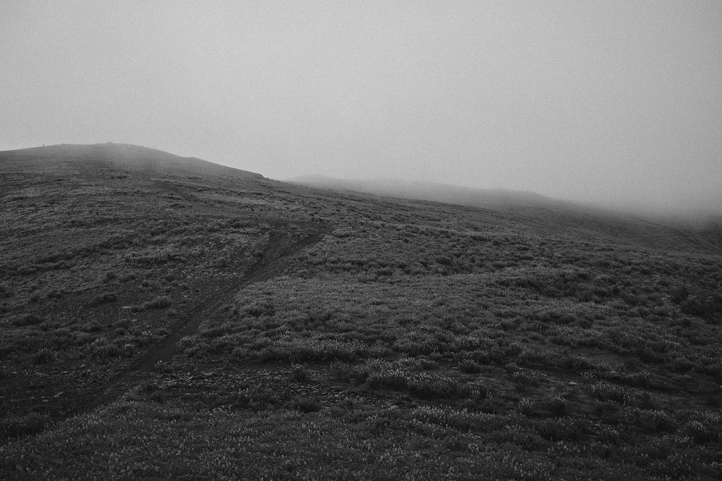 Hills and fog in black and white.
