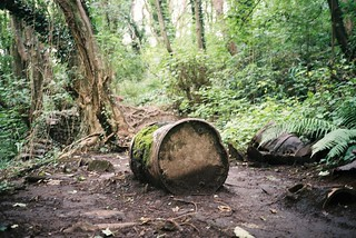 Tar barrels in Nightingale Valley | by knautia