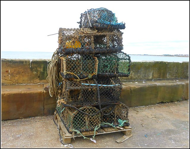 Yorkshire Type Crab-Pots ..