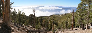 230 Panorama view west and north from the San Bernardino Peak Trail | by _JFR_