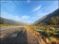 Tioga Pass Road @ Yosemite National Park