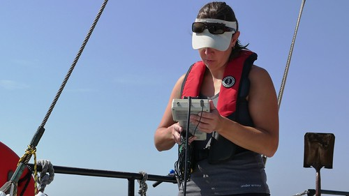 Photo of staff monitoring water data on a monthly hypoxia cruise