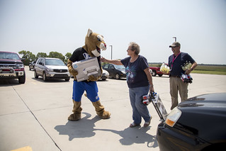 Bart the cougar on move in day