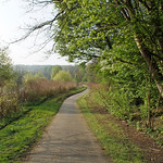 Weg in der Heisinger Ruhraue