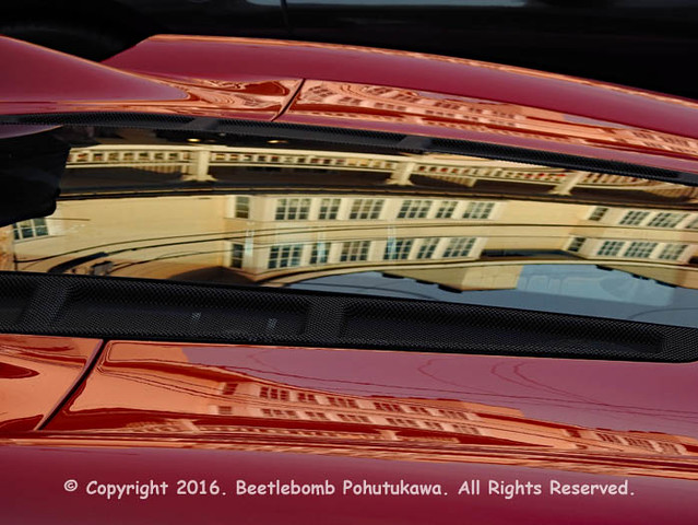 2016: Exotics on Cannery Row