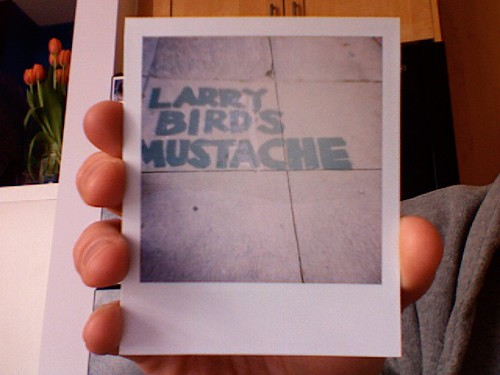 Larry Bird's Mustache | by Dunstan