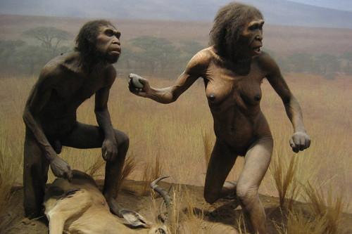NYC - AMNH: Spitzer Hall of Human Origins - Homo Ergaster