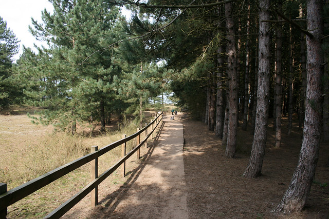 Footpath to the beach at Holkham