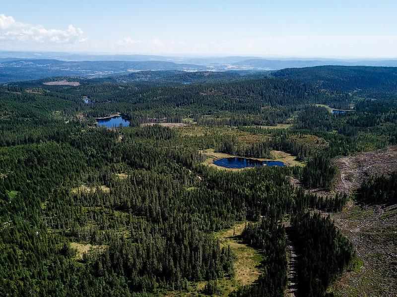 33-Utsikt mot Ormetjern og Dammyra fra Svartevannet (drone)