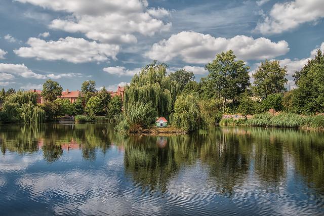 Schwanensee in der Lutherstadt Wittenberg